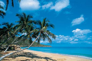 Карибы. Отдых на Карибах